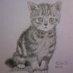 Нарисовать котенка поэтапно