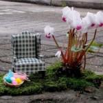 Миниатюрные сады в выбоинах