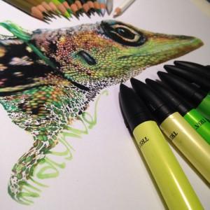 реалистичные рисунки цветными карандашами