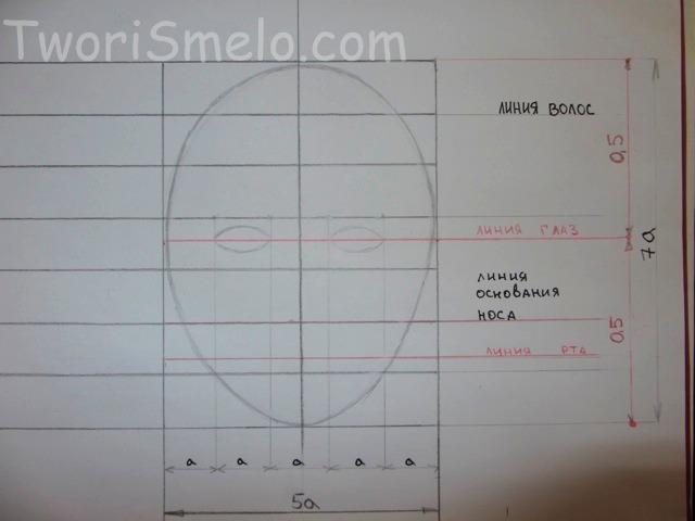 пропорции головы человека, рисуем овал