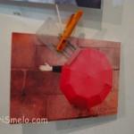 fotootchet-s-vystavki-sushka-v-kieve-8-12-2012_13