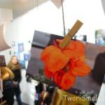 fotootchet-s-vystavki-sushka-v-kieve-8-12-2012_14