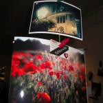 fotootchet-s-vystavki-sushka-v-kieve-8-12-2012_3