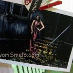 fotootchet-s-vystavki-sushka-v-kieve-8-12-2012_5