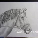 Нарисовать голову лошади