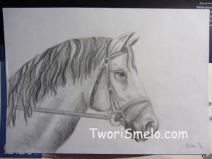 как нарисовать голову лошади простым карандашом
